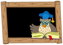 Wooden blackboard with owl teacher Royalty Free Stock Image