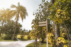 Wooden blank waypost template with the footpath near, tropical r. Wide-angle view of the resort footway surrounded by palms, lawns, and other trees, with a blank Royalty Free Stock Images