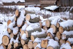 Wooden blocks stacked in a woodpile in winter. Logs short in the snow lie in a pile. On the ground royalty free stock image