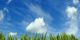 Wooden board against grass and sky background. Image of wooden board against grass and sky background Stock Photos