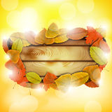 Wooden board with autumn colorful leaves Stock Images