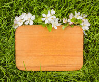 Wooden board and  branch of apple tree flower Stock Image