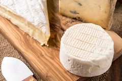 Wooden board with cheeses and knife Stock Image