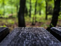 Wooden board on a colorful blurry background. Bokeh abstract tabletop summer plank spring product montage design surface empty deck display green nature blurred stock photography