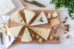 Wooden board with different kinds of delicious cheese with nuts. And herbs on white table stock photo