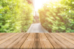 Wooden board empty table blur trees in forest background - can be used mock up for display or montage your products. Stock Photos