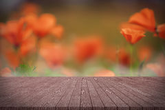 Wooden board empty table in front of orange California poppies. Stock Images