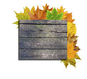 Wooden board and lot autumn leaf around  on white Royalty Free Stock Photos