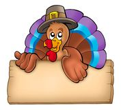Wooden board with lurking turkey. Color illustration Royalty Free Stock Image