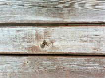 Wooden board. Natural background stock photography