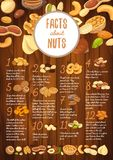 Facts about nuts on wooden board with kernel. Wooden board with nut seeds and interesting facts about walnut and pistachio, brazil nut and peanut, almond and Stock Image