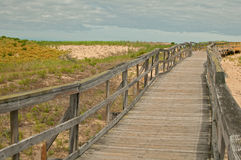 Wooden board path way to the beach Stock Photography