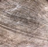 Wooden board. Piece of wooden board ready to burn Stock Photos