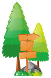 Wooden board and pine trees. Illustration Stock Photo