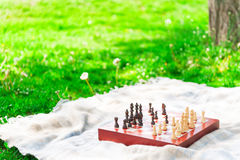 Wooden board for playing chess on grass Stock Image