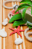 Wooden board with seashells and bottle Stock Photography