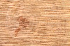 Wooden board with snub. Texture of a cut tree trunk close-up. Structure of a wooden surface Royalty Free Stock Photo