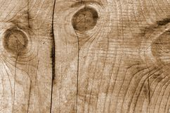 Wooden board striped texture. Light brown wooden board striped texture Stock Images
