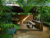 Wooden board table in tropical forest stock photography