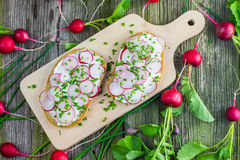 Wooden Board with Two Slices of Bread with Curd Cheese, Radishes Royalty Free Stock Photography