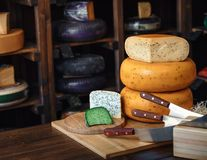 Wooden board with various kinds of delicious cheese blue green violet cheese with mold on the table with knives royalty free stock photography