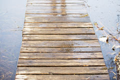 Wooden board walk on bog land Royalty Free Stock Photography