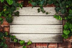 Wooden boards framed by ivy Royalty Free Stock Photos