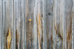 Wooden boards with knots and scratches. stock image