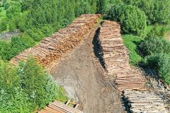 Wooden boards, log cabin trunks of conifers, top aerial view.  royalty free stock photo