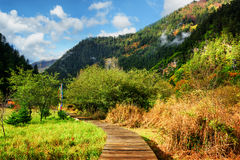 Wooden boardwalk across scenic field among wooded mountains Stock Photography