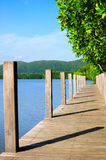Wooden boardwalk. Stock Photography