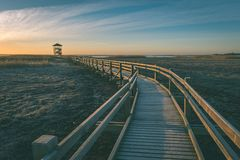 wooden boardwalk with bird watch tower in early morning - vintag Stock Image