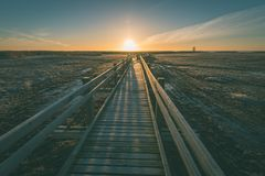 wooden boardwalk with bird watch tower in early morning - vintag Royalty Free Stock Photos