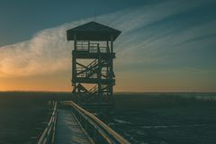 wooden boardwalk with bird watch tower in early morning - vintag Royalty Free Stock Images