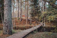 Wooden boardwalk and a bridge across a small river in mixted forest. Autumn landscape. stock photo