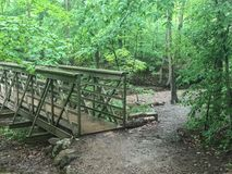Bridge through forest trail at national park Stock Photo