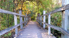 Wooden boardwalk bridge over swamp in colorful autumn Stock Photography