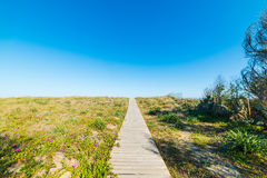 Wooden boardwalk in Colostrai Stock Photography