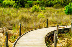 Wooden boardwalk in the dunes leading to the sandy beach, the pa Stock Images