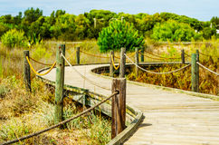 Wooden boardwalk in the dunes leading to the sandy beach, the pa Stock Photo