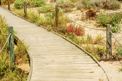 Wooden boardwalk in the dunes leading to the sandy beach, the pa Royalty Free Stock Photo