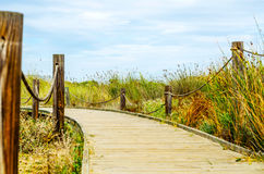 Wooden boardwalk in the dunes leading to the sandy beach, the pa Stock Photos