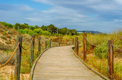Wooden boardwalk in the dunes leading to the sandy beach, the pa Stock Image