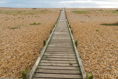 Wooden boardwalk, Dungeness. Royalty Free Stock Photo
