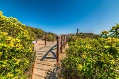 Wooden boardwalk and flowers in Santa Giusta shoreline. Sardinia, Italy Stock Photos