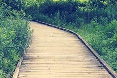 Wooden boardwalk in forest Stock Photos