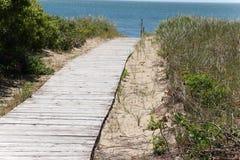 Wooden boardwalk Royalty Free Stock Photos