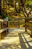 Wooden boardwalk leading to the sandy beach, the path by the sea Royalty Free Stock Photography