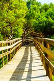 Wooden boardwalk leading to the sandy beach, the path by the sea Stock Photography
