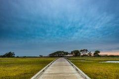 Wooden Boardwalk Through Marsh Stock Image